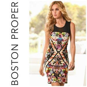 Boston Proper Illusion Bodycon Floral Scuba Dress
